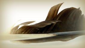 Svart fjäder Royaltyfria Bilder