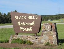 svart Forest Hills national arkivfoton