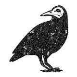 svart galande royaltyfri illustrationer