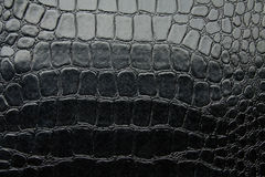 Svart glansigt konstgjort läder för krokodil Arkivbild