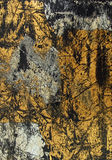 svart guld för bakgrund royaltyfria foton