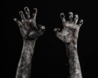 Svart hand av död, gå absolut, levande dödtema, halloween tema, levande dödhänder, svart bakgrund, mammahänder Arkivbild