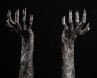 Svart hand av död, gå absolut, levande dödtema, halloween tema, levande dödhänder, svart bakgrund, mammahänder arkivfoto
