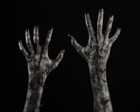Svart hand av död, gå absolut, levande dödtema, halloween tema, levande dödhänder, svart bakgrund, mammahänder Royaltyfri Bild