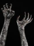 Svart hand av död, gå absolut, levande dödtema, halloween tema, levande dödhänder, svart bakgrund, mammahänder Arkivbilder