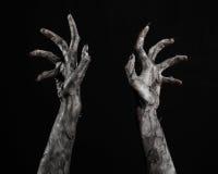 Svart hand av död, gå absolut, levande dödtema, halloween tema, levande dödhänder, svart bakgrund, mammahänder Royaltyfria Bilder