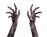 Svart hand av död, gå absolut, levande dödtema, halloween tema, levande dödhänder, vit bakgrund, mammahänder Arkivfoton