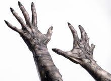 Svart hand av död, gå absolut, levande dödtema, halloween tema, levande dödhänder, vit bakgrund, mammahänder Fotografering för Bildbyråer