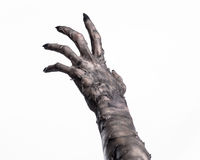 Svart hand av död, gå absolut, levande dödtema, halloween tema, levande dödhänder, vit bakgrund, mammahänder Arkivbild