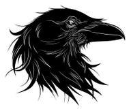 svart head korpsvart royaltyfri illustrationer