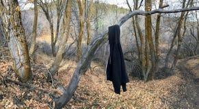 Svart Hoodietröja som hänger från träd i sen slinga för nedgångpanoramaskog på den gula gaffeln och Rose Canyon Trails i Oquirrh  Fotografering för Bildbyråer