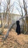 Svart Hoodietröja som hänger från träd i sen slinga för nedgångpanoramaskog på den gula gaffeln och Rose Canyon Trails i Oquirrh  Royaltyfria Foton