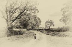 Svart hund som promenerar en landsgränd Arkivfoto