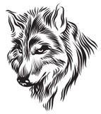 Svart huvud för vit varg Vektor Illustrationer