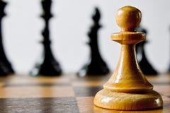 svart isolerad schackfärg pantsätter white Fotografering för Bildbyråer