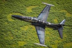 Svart jaktflygplanT2hök Royaltyfri Bild