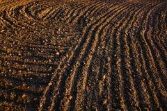 Svart jord plogat fält Jordtextur Royaltyfri Fotografi