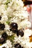 Svart jul klumpa ihop sig på det vita trädet i bakgrunden med andra garneringar och girlander kopiera avstånd Arkivbilder