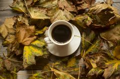 Svart kaffe och höstsidorna, höstbakgrund arkivbilder