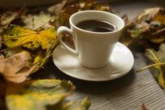 Svart kaffe och höstsidorna, höstbakgrund fotografering för bildbyråer