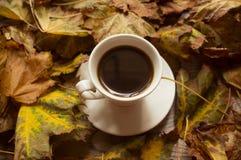 Svart kaffe och höstsidorna, höstbakgrund arkivbild