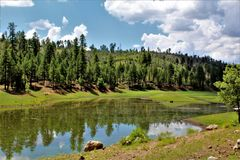 Svart kanjon sjö, Navajo County, Arizona, Förenta staterna, Apache Sitegreaves nationalskog royaltyfri bild
