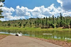 Svart kanjon sjö, Navajo County, Arizona, Förenta staterna, Apache Sitegreaves nationalskog royaltyfria foton