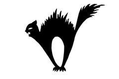 svart katt Arkivfoton