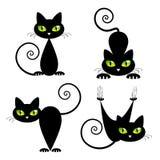 Svart katt med gröna ögon Arkivbild