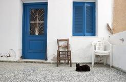 Svart katt och hus Arkivbild