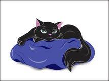 Svart katt på blåttkudden Arkivbild