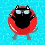 Svart katt som svävar på röd cirkel för pölflötevatten Bästa luftsikt Hello sommar Simbassängvatten solglasögon lifebuoy gullig b royaltyfri illustrationer