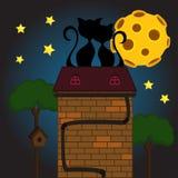 Svart katt under månen Fotografering för Bildbyråer