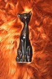 svart kattbrandpäls Royaltyfri Bild