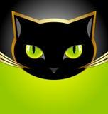 Svart katthuvud Fotografering för Bildbyråer