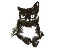 svart kattillustration Royaltyfri Bild