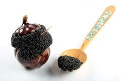 svart kaviar Arkivbild