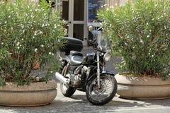 Svart klassisk motorcykel som parkeras mellan två blomsterrabatter i Rome Arkivbilder