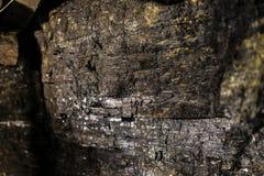 Svart kolgruva för kolväggtunnelbana Fotografering för Bildbyråer