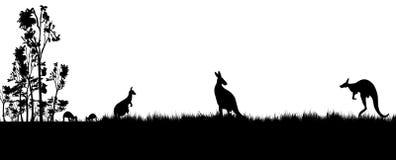 Svart kontur av koalan och kanagroos på vit bakgrund