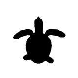Svart konturillustration av den gröna sköldpaddan Arkivfoto