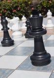 Svart konung i utomhus- schackuppsättning i trädgård Royaltyfria Foton