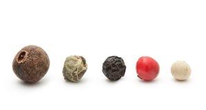 Svart krydda för röd, grön vit peppar Arkivfoto