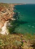 svart kusthav Arkivbilder