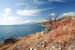 svart kusthav för höst Royaltyfria Foton