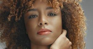 Svart kvinna för blandat lopp med den neutrala makeupståenden Royaltyfri Bild
