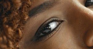 Svart kvinna för blandat lopp med den neutrala makeupståenden Fotografering för Bildbyråer