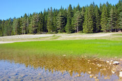 svart lake Royaltyfria Bilder