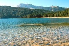 svart lake Arkivfoton