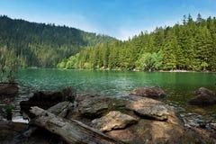 svart lake Arkivbilder